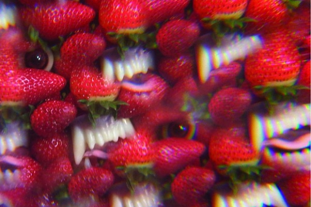 Thee Oh Sees - Toe Cutter Thumb Buster