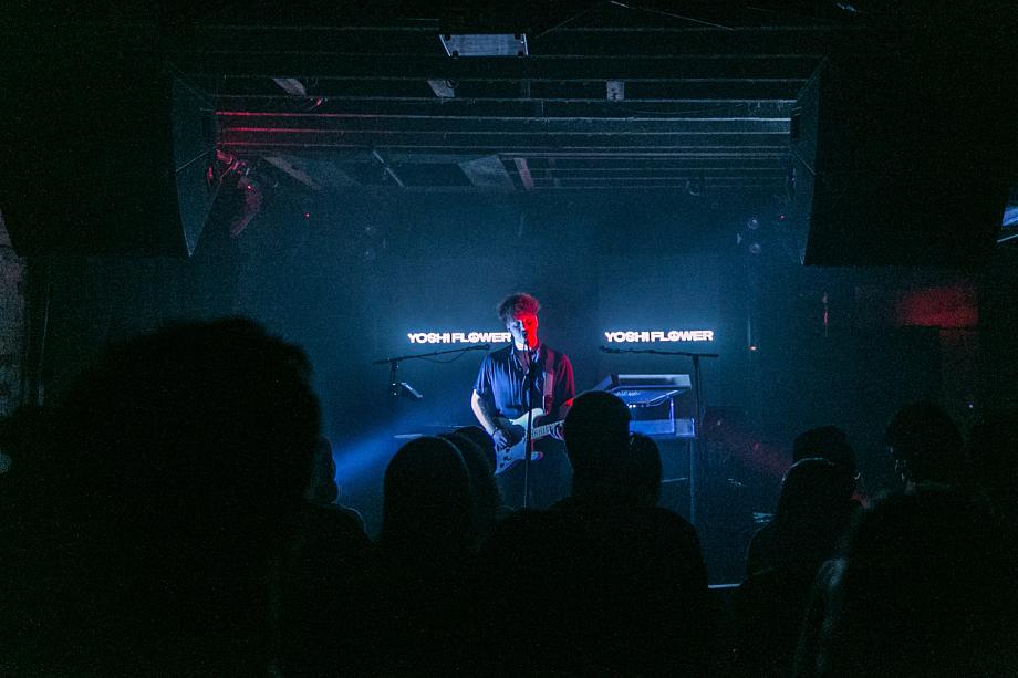 Yoshi Flower - The Velvet Underground-3
